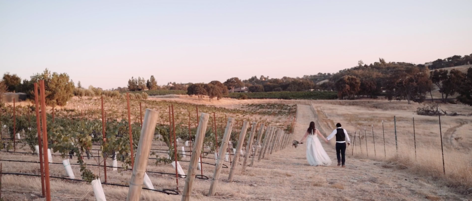 Katie + Gian | Creston, California | Ella's Vineyard