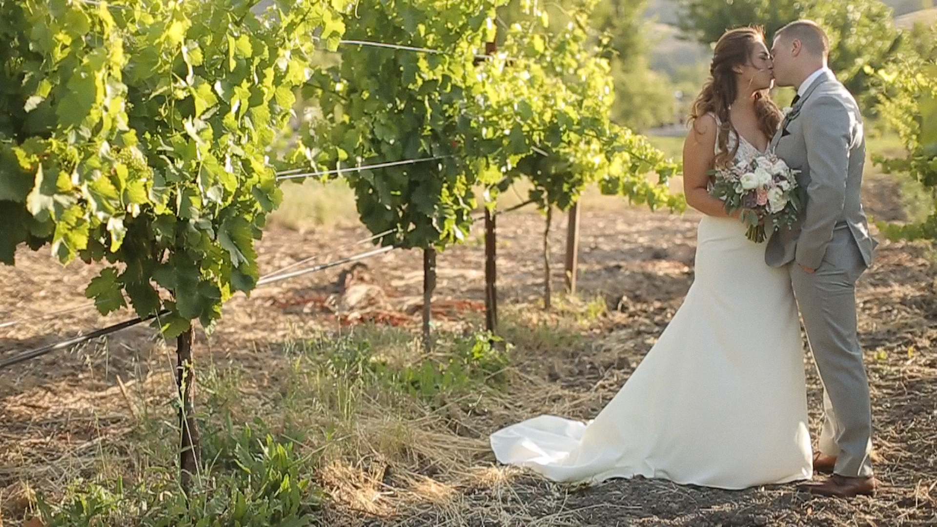 Nina + Tristan | Sonoma, California | Cline Cellars