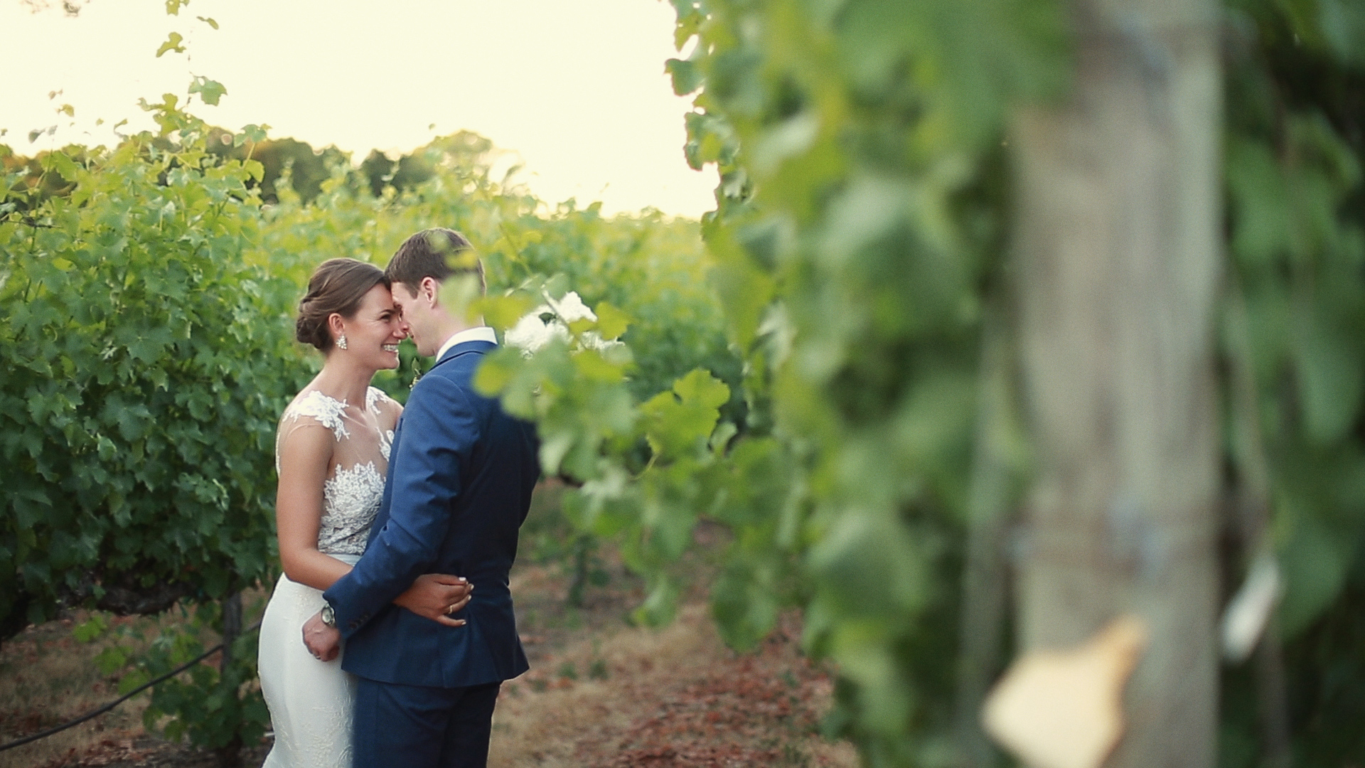 Elizabeth + Stephen | Healdsburg, California | Chalk Hill State and Winery