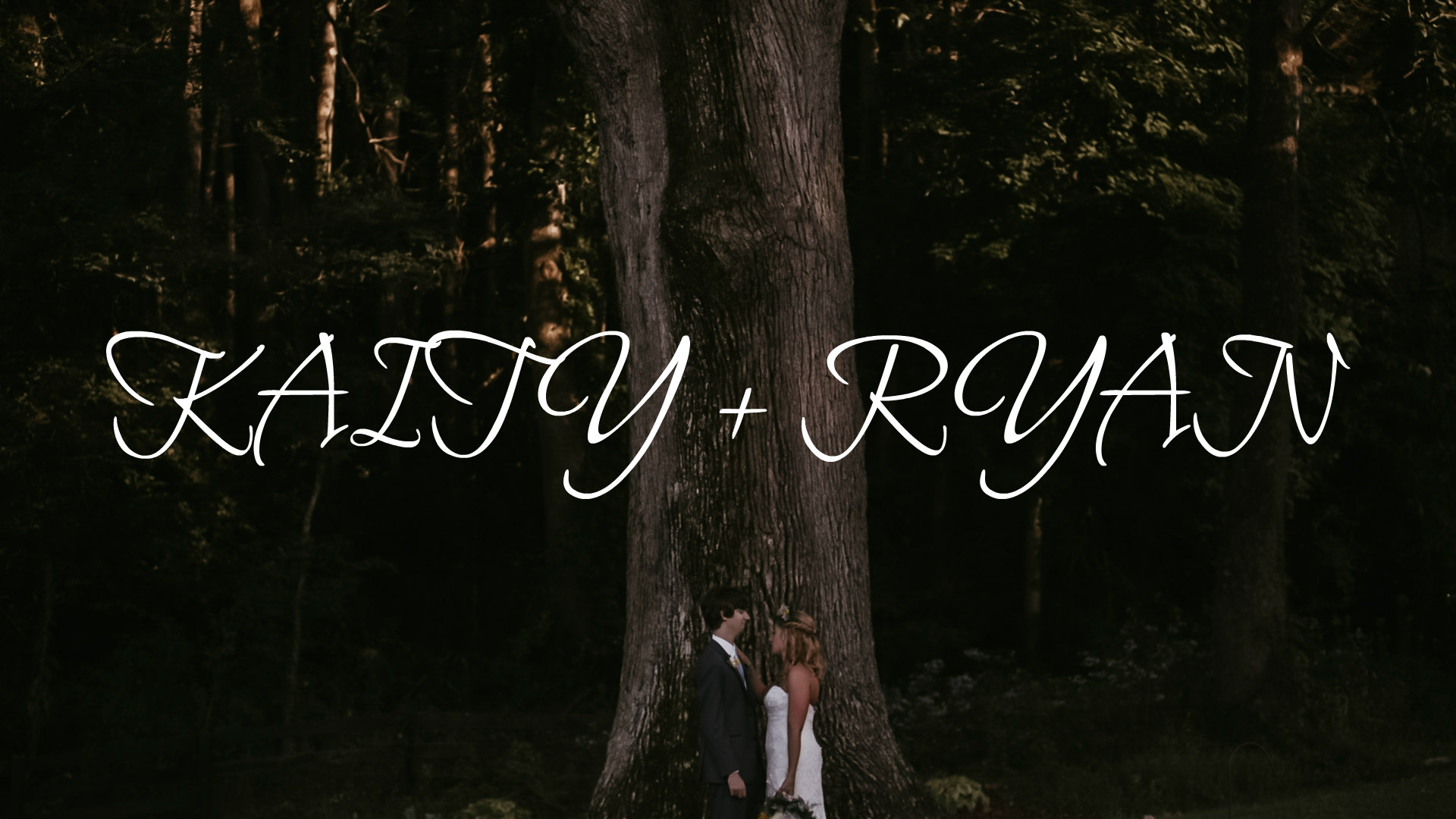 Katy + Ryan | Weaverville, North Carolina | The fields of blackberry cove