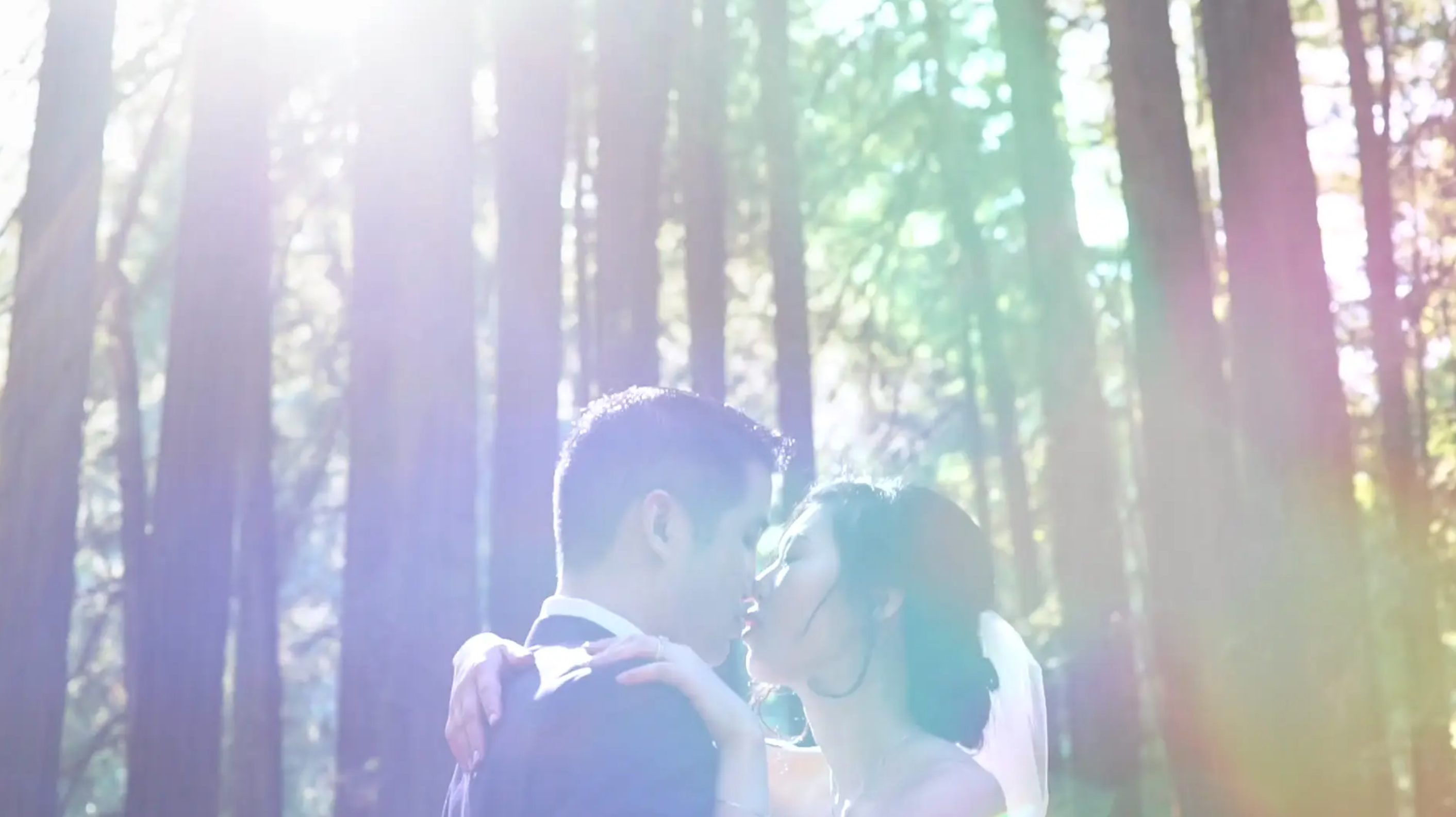 Yao + Alan | Mill Valley, California | The Outdoor Art Club