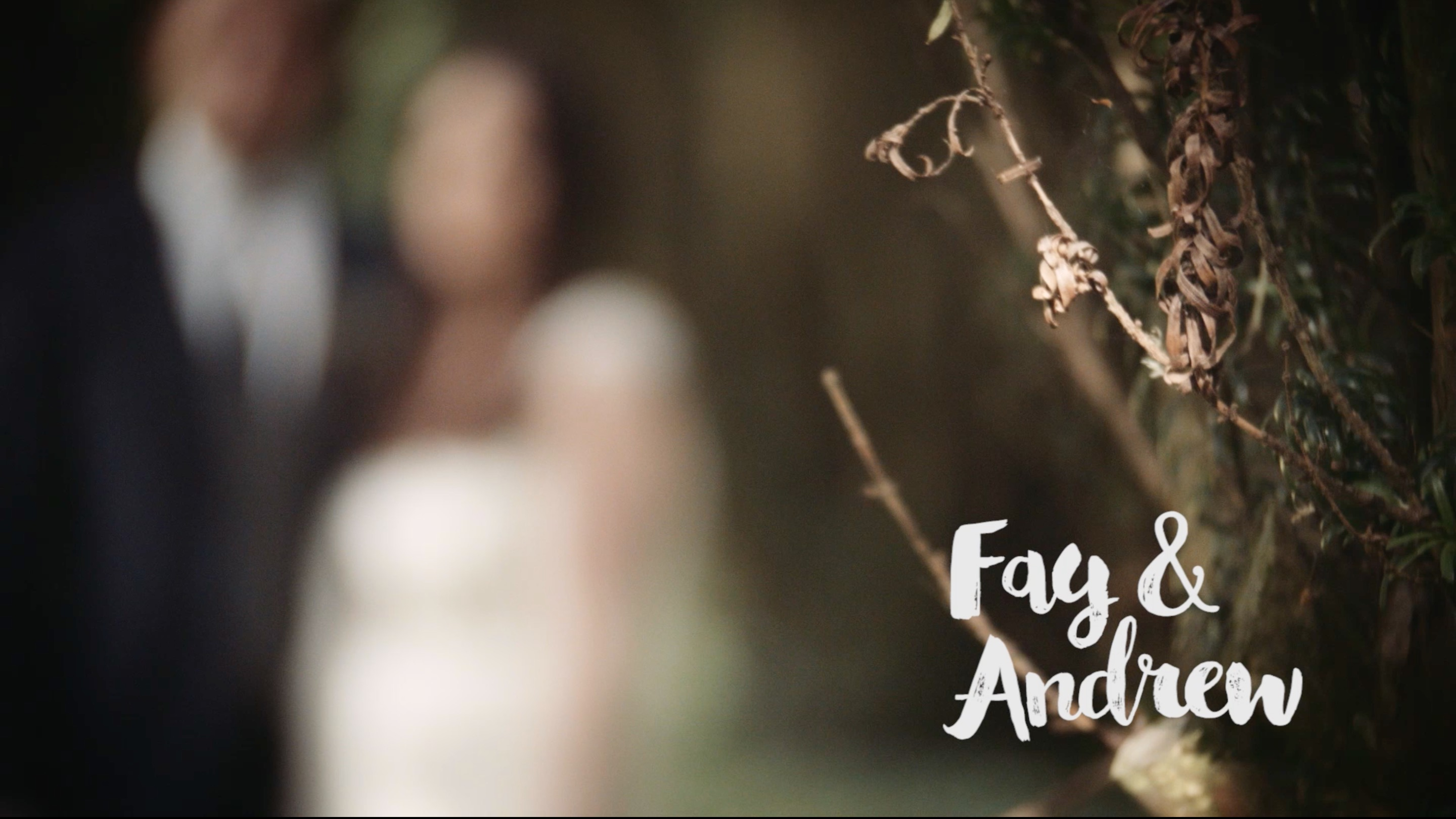 Fay + Andrew | Carlow, Ireland | Lisnavagh House
