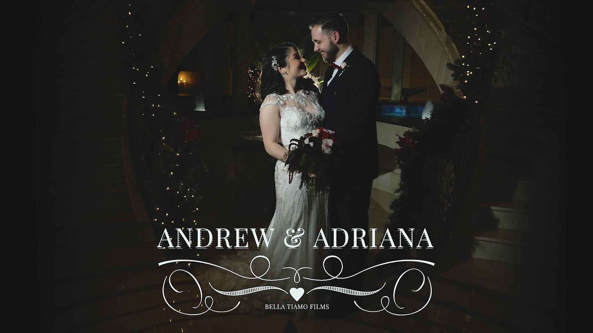 Adriana + Andrew | Addison, Illinois | venuti's banquet
