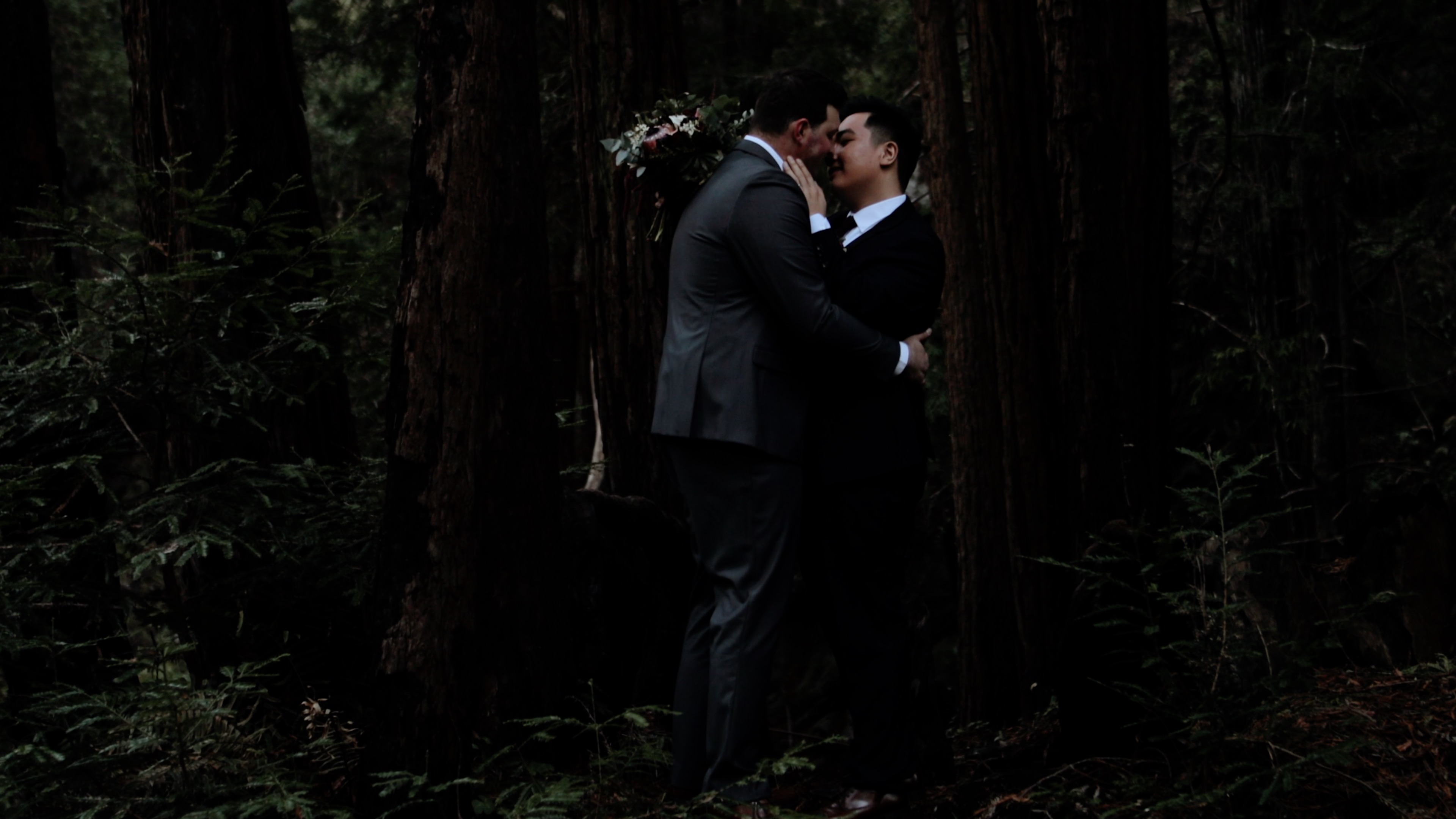 Gebriel + Ryne | Big Sur, California | Limekiln State Park